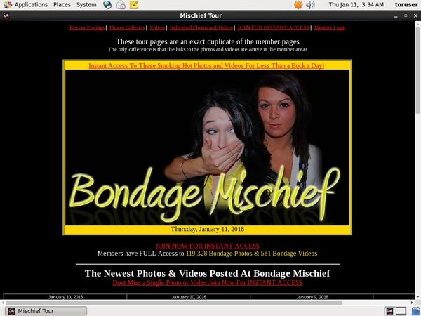 Working Bondagemischief Pass